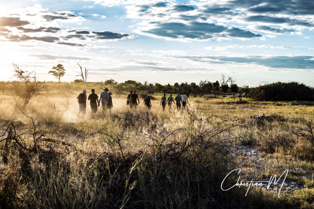 photo reportage savanne